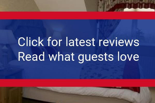 abocurragh.com reviews