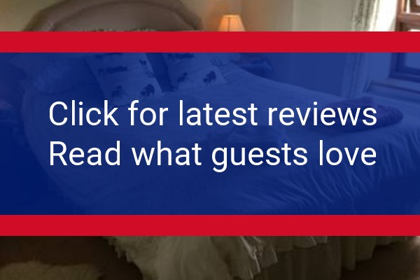 highorchard.co.uk reviews