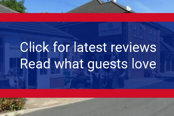 theavenuehotel.co.uk reviews